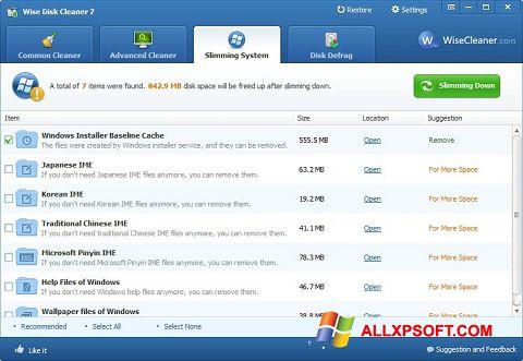 Skärmdump Wise Disk Cleaner för Windows XP